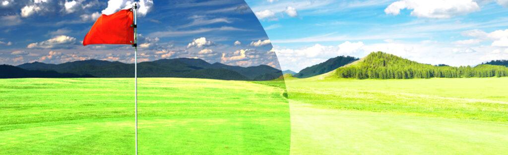ゴルフ時のグリーン上の見え方比較