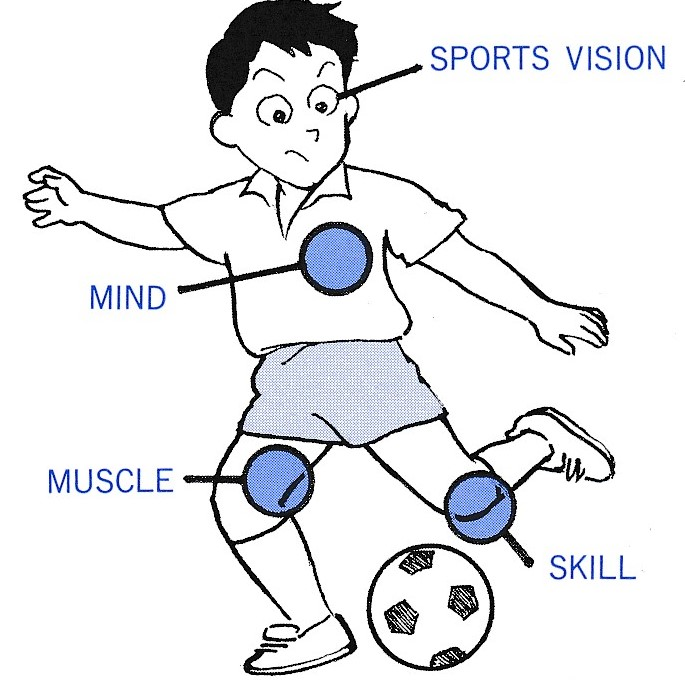 心技体に加えて眼がスポーツのパフォーマンスを左右する