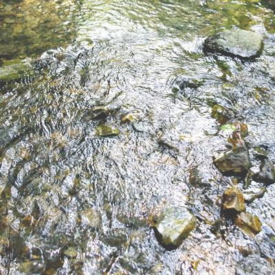 裸眼での川底の見え方は太陽光の反射が強い